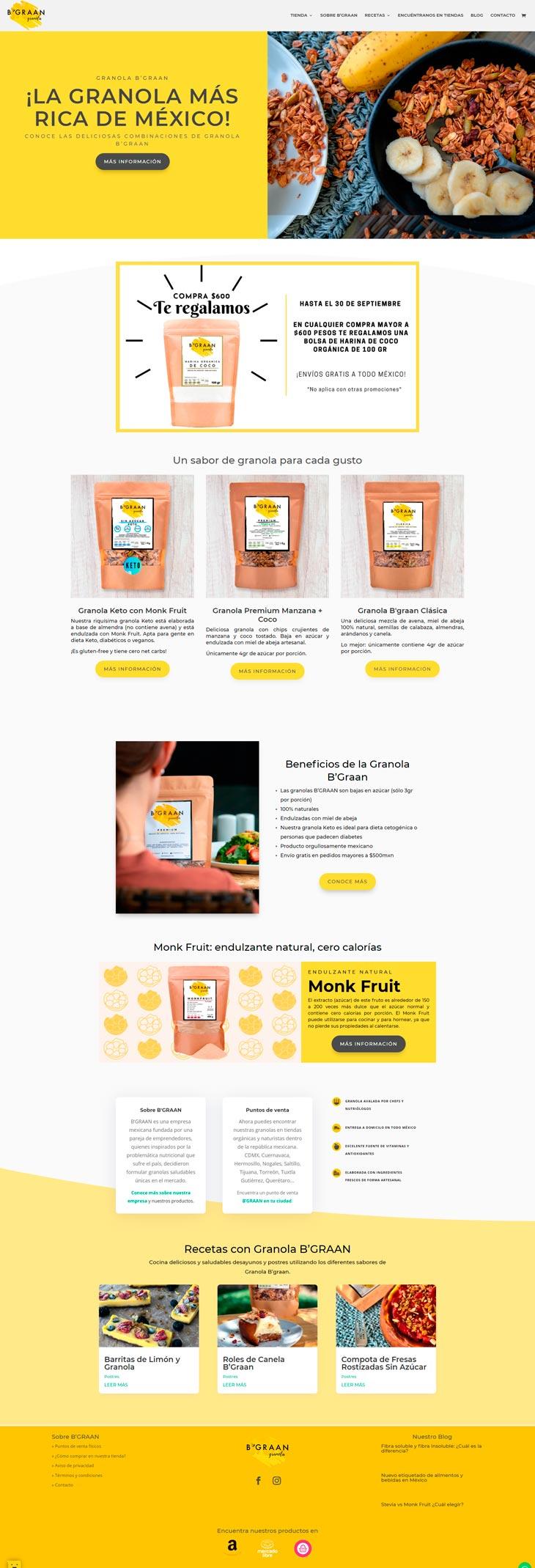 Rediseño sitio web ejemplo Home Page