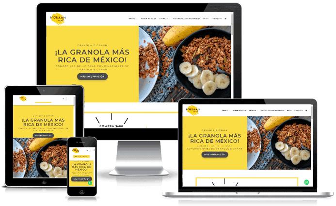 Rediseño Sitio Web y Campaña SEO B'graan